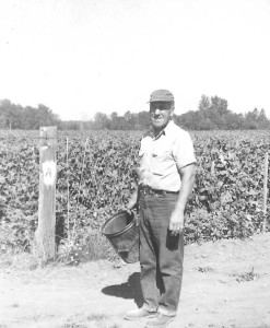 Daddy in beanfield